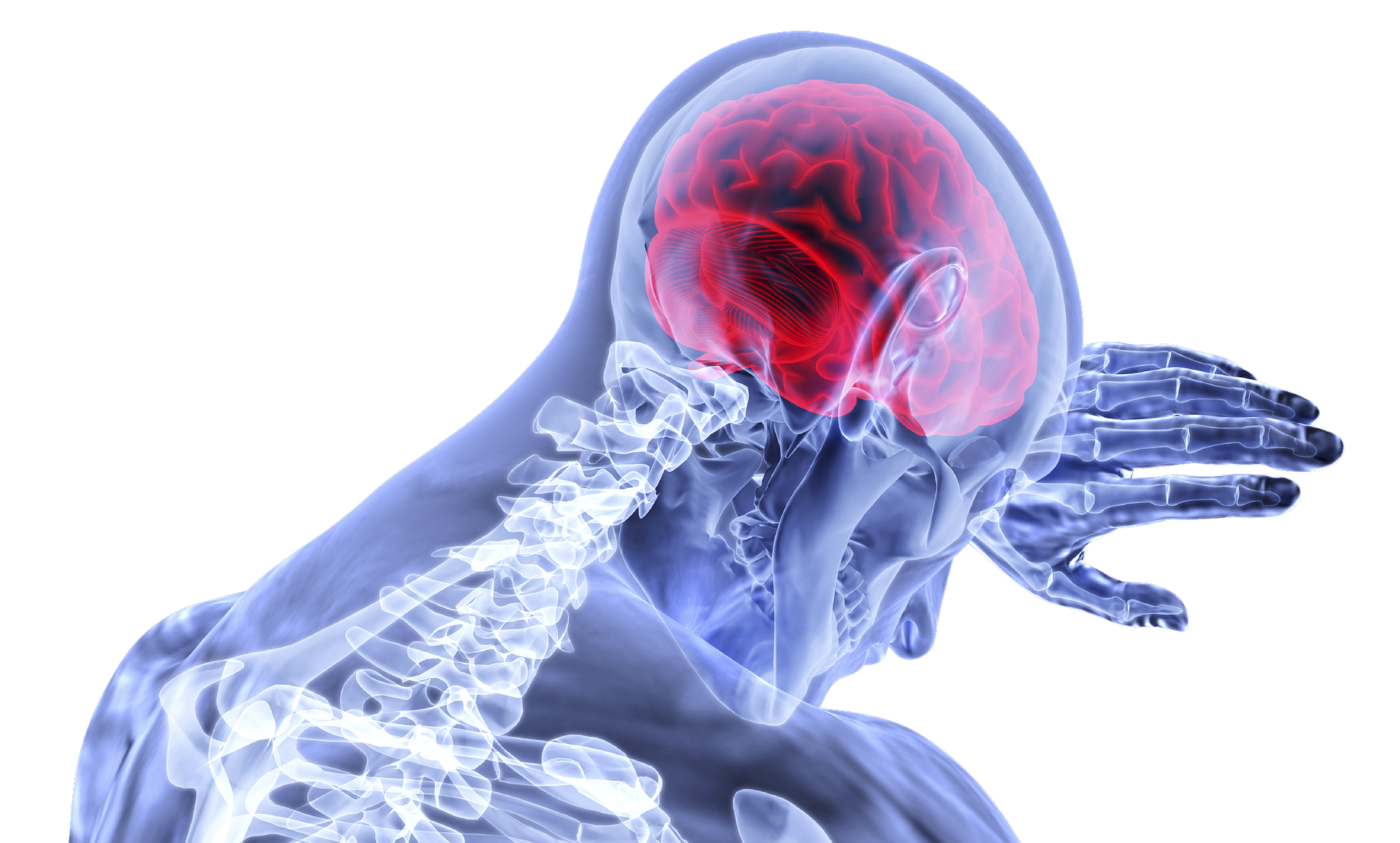 Doctor's Orders: What To Do After a Brain Injury